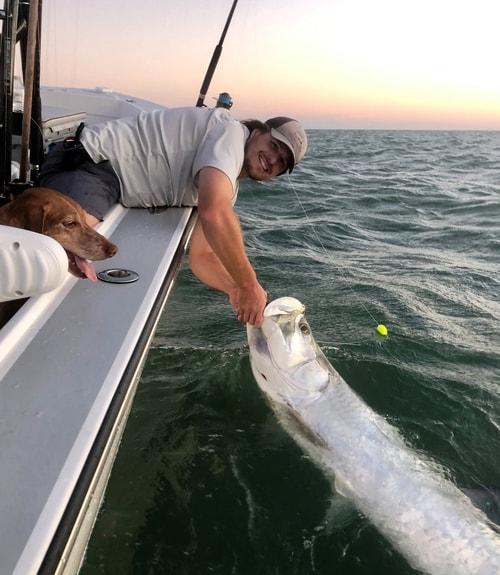 Tarpon Season: Tarpon Fishing Florida Best Time Year