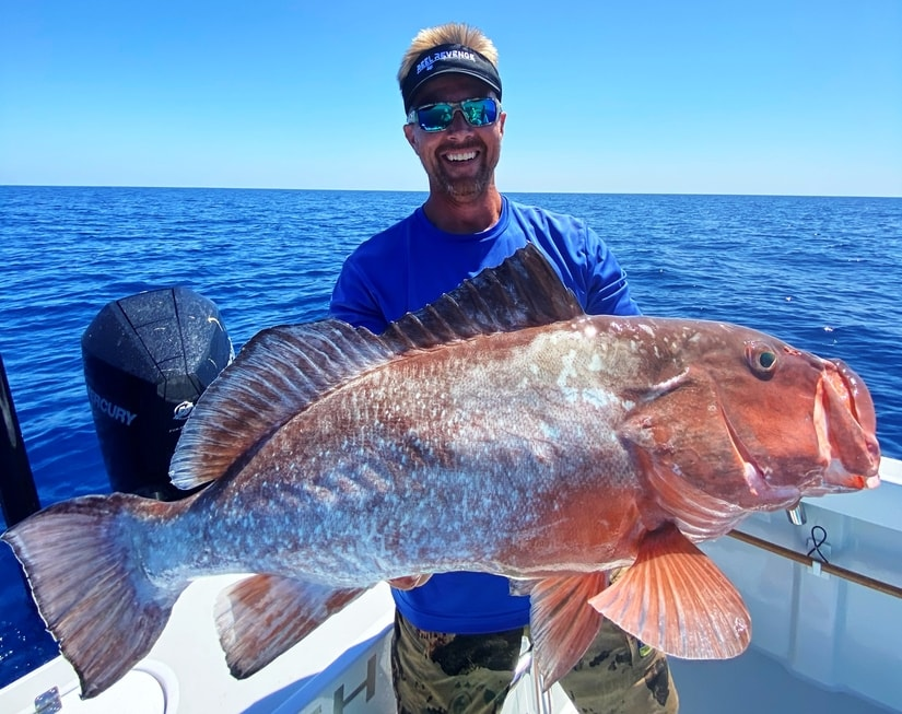 Red Grouper - Grouper Fishing Fort Myers