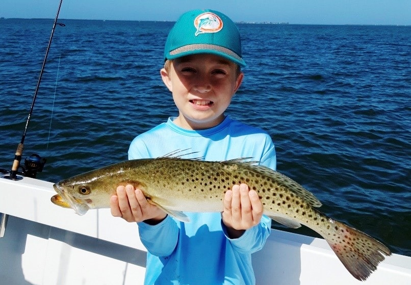 Spotted Sea Trout - Boca Grande Fishing