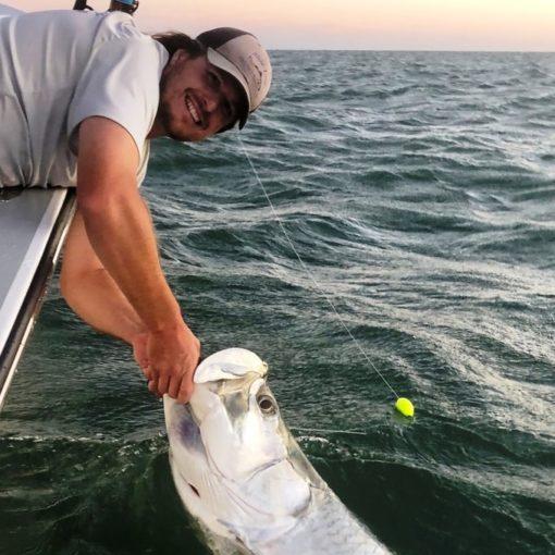 Tarpon - Tarpon Fishing Fort Myers