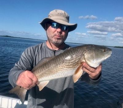 November 2020 Cape Coral Redfish